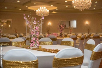 Windsor Ballroom at The Holiday Inn in Gold